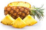 Замораживание - высушенный флейвор качества еды благоуханием порошка ананаса