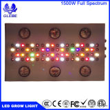 Lumière LED Grow Light Spectrum ETL Certification Lighting for Hydroponic Indoor Serre / Plantes de jardin cultivant 1000W