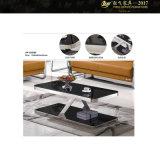 細長いガラスコーヒーテーブルのガラスおよび金属のコーヒーテーブルセット(YF-170078T)
