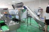 Casca de lavagem da batata industrial que corta a estaca que enxágua a secagem processando a linha de produção