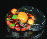 Коробка прозрачного торта упаковывая подноса пластмассы фруктового салата