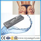Injeção cutânea antienvelhecimento do enchimento de Reyoungel que remove os enrugamentos (Derm 2ml)