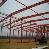 Struttura d'acciaio poco costosa per la pianta di fabbrica