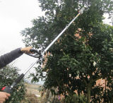 цепная пила Поляк газолина достигаемости 2-Stroke 1.5-2.25m длинняя