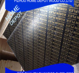 Contreplaqué en bois brun / Contreplaqué marin / Coffrage
