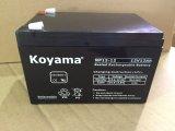 De Navulbare Batterij van UPS 12V12ah voor UPS