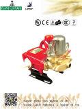 Landwirtschaftliche/industrielle Wasser-Pumpe mit ISO9001 (LS-30A)