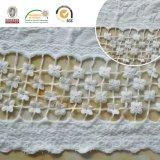 Tessuto del merletto della maglia, ricamo svizzero Accessoriese30010