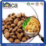 La masticazione di Maca dell'alimento salutare riduce in pani le pillole di Maca