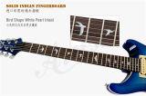 Guitare électrique figure classique professionnelle de P.R. de chapeau d'érable d'Aiersi