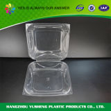 Blister Crystal Storage Fresh Food Container