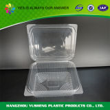 透明な蝶番を付けられたふたのプラスチック食糧容器