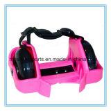 Ce Aprobación de dos ruedas ajustable Flashing Roller Skate zapatos con ruedas LED