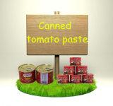 Inserimento di pomodoro inscatolato dell'inserimento di pomodoro di marca della salsa Double Concentre De Tomate