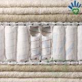 Tessuto non tessuto dei pp per lo strato che appoggia strato interno che fa tessuto