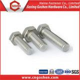 Bullone Hex M8 dell'acciaio inossidabile DIN933