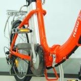 Facile pliant 20 '' 36V 250W vélo électrique