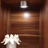 Garderobe der Fühler-magnetische Unterseiten-LED oder Küche-Schrank-Licht mit Lithium-Batterie