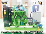 Generator-Set-kleine Motor-Energie des Erdgas-80kw