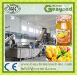 Chaîne de production fraîche d'encombrement de pâte de sauce à mangue