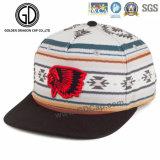 Chapeau acrylique de Snapback de basket-ball de la mode 2016 apparente avec la broderie 3D