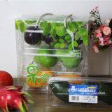 Rectángulo de regalo de la fruta del OEM con la impresión en color (cesta de fruta plegable)