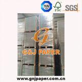 Placa de papel Triplex de boa qualidade com parte traseira do branco