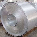 ventas especiales 304 del acero inoxidable de una placa de la bobina