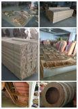 Sofa de cuir véritable de salle de séjour (809 simples)