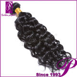 Frisches Hair Full Cuticle Soft Virgin Hair 7A Grade brasilianisches Virgin Hair
