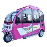 трицикл электрического самоката колеса 650W 3 взрослый от Кита