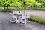 Outdoorの大きい庭Rattan Bar TableおよびChairs