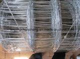 Clôture galvanisée de Glassland de bétail/moutons
