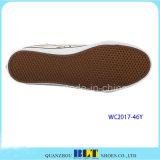 Clourful a estampé des chaussures de toile pour des femmes