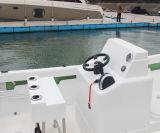 すべてのNew 22の' Saleのためのガラス繊維Fishing Cheap Yacht