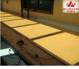 El precio de fábrica de 36W luz del panel LED para Office con el CE RoHS (PLS060-001)