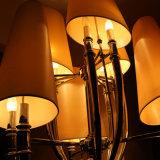 De Europese Lamp van de Tegenhanger van het Chroom van het Hotel Decoratieve met de Schaduw van de Stof