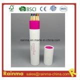 Paper Tube Holder에 있는 높은 Quality Color Pencil