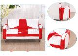 Sofas de PVC de Seater de qualité 2/meubles en cuir superbes modernes d'enfants