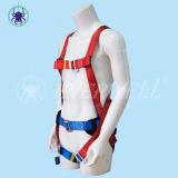Cablaggio pieno del corpo, cavo di sicurezza, cintura di sicurezza, cinghia di sicurezza, tessitura con il modo fisso del Due-Punto (EW0314H)