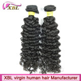 Cabelo Curly indiano do Virgin da venda por atacado da fábrica do cabelo de China