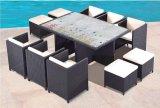 Corrispondenza della mobilia visualizzazione del controsoffitto e del rattan esterni del PE