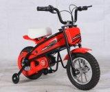Bici eléctrica del bolsillo del cabrito (SQ200DH)