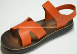 Belli soli sandali comodi Fh10029 dell'unità di elaborazione del ragazzo