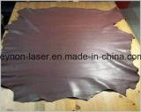 Máquina de estaca de couro de venda quente do laser do Special para materiais flexíveis