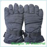 Guanti differenti degli adulti che sciano & guanti del motociclo