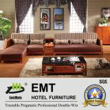 Sofa matériel de tissu bas en bois réglé (sofa de 6602# -1 réglé)