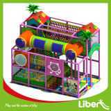 Toddlersのための小さいIndoor Playground Equipment