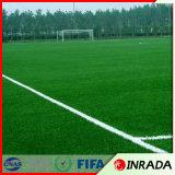 اصطناعيّة عشب مرج طبيعيّة خضراء كرة قدم مرج