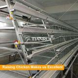 層のためのフレームの自動鶏によって使用される養鶏場装置
